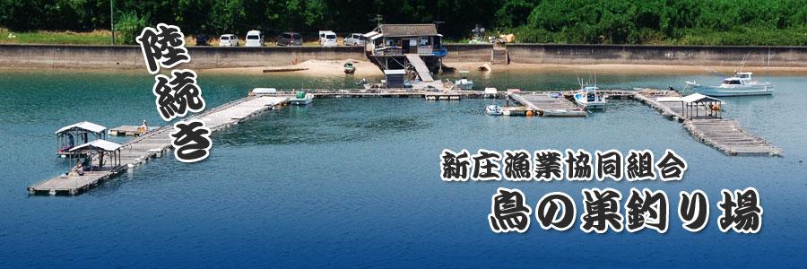 陸続き!新庄漁業協同組合「鳥の巣釣り場」へようこそ